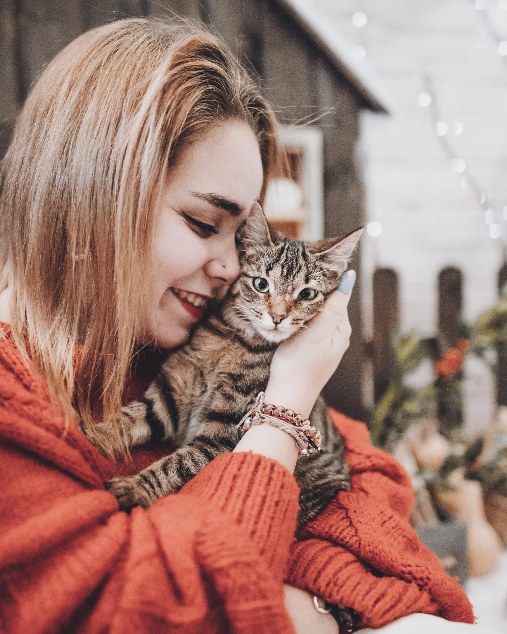Cómo Saber Que Tu Gato Te Quiere